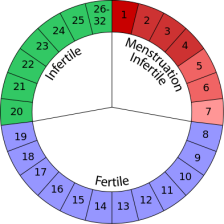 Calendar-based method for fertility cycle awareness.
