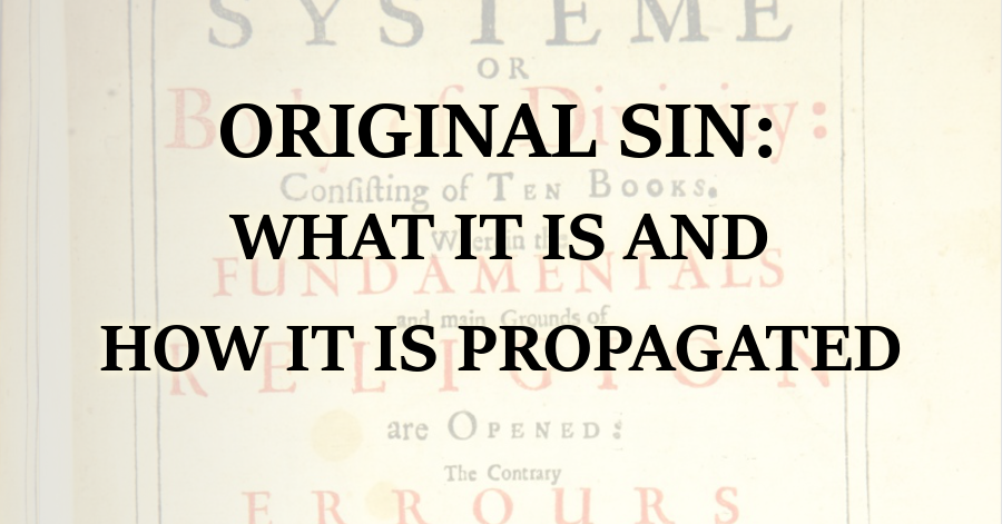 Reformed Theology Original Sin: What It Is And How It Is Propagated  Calvinism