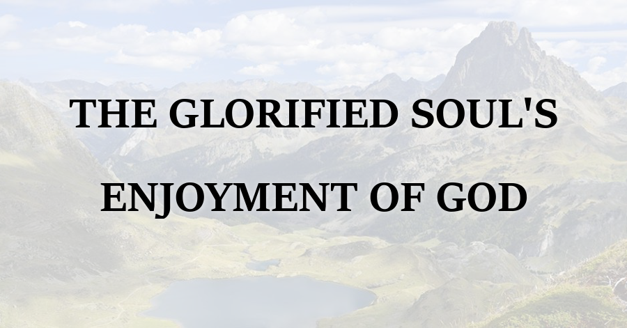 Glorified Souls Enjoyment of God